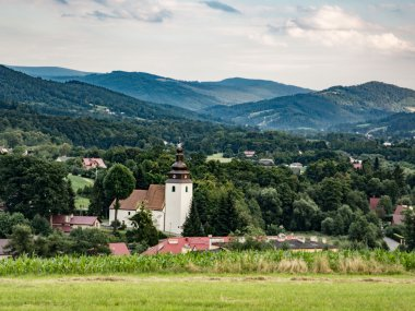 Widok na Górki Wielkie, Górki Małe oraz Beskid Śląski nad Doliną Brennicy, fot. Radosław Szczepanek