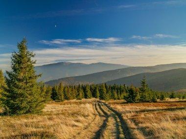 Babia Góra z Hali Trzebuńskiej na Jałowcu, fot. Radosław Szczepanek