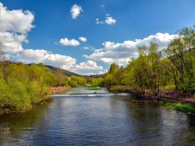 Rzeka Wisła na wysokości Ustronia Polany, fot. Radosław Szczepanek