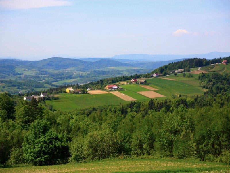 Pogórze Rożnowskie, fot. Andrzej Mleczko
