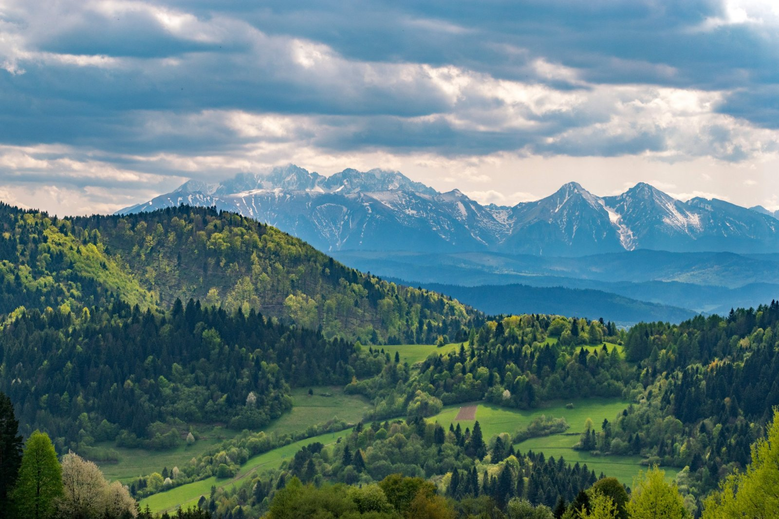 Widok z Palenicy na Pieniny i Tatry