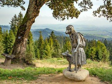 Rzeźba owca-turystna na Łapsowej Polanie w ramach Owczego szlaku w Nowym Targu, fot. Radosław Szczepanek