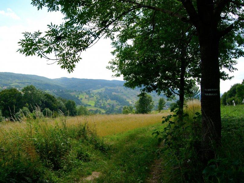 Niebieski szlak w Wiśnicko-Lipnickim Parku Krajobrazowym