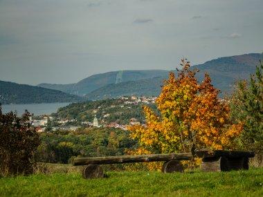 Jesiennie na Średnim Grojcu, fot. Radosław Szczepanek