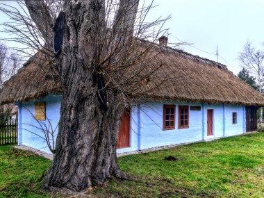 Stary Dom Witosów, fot. Tadeusz Rola
