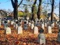Cmentarz wojenny nr 276 w Brzesku, fot. Agnieszka Cygan