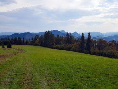 Widok z polany Cisówka na Łysą Górę, Flaki, Trzy Korony, Macelową Górę (ostry szpic), fot. Jacek Dziwisz