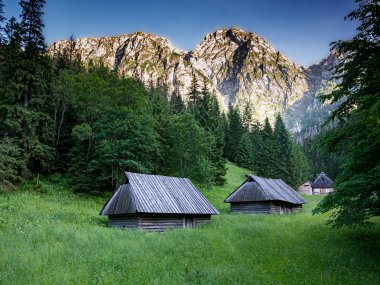 Dolina Strążyska z masywem Giewontu w tle, fot. Karolis Kavolelis / Shutterstock.com