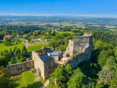 """Ruiny zamku """"Kamieniec"""""""