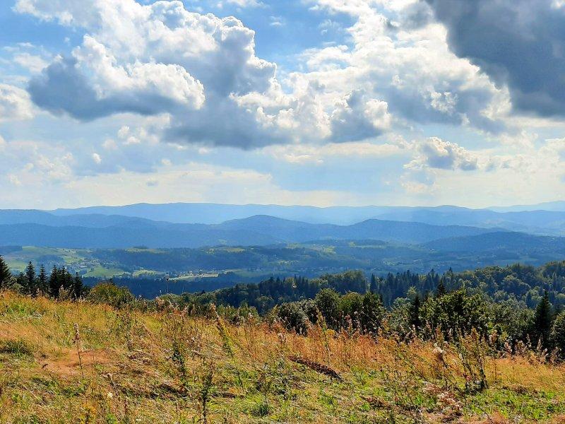 Panorama spod szczytu Jodłowej Góry, fot. Agnieszka Cygan