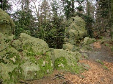 Orli Kamień