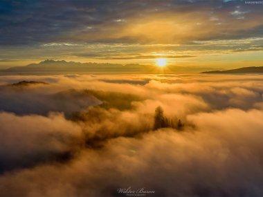 Wieża widokowa na Koziarzu, fot. |Wiktor Baron Fotografia|https://baronphotography.eu/