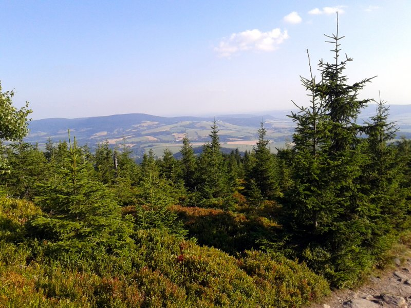 Widok z trasy na Góry Bystrzyckie, fot. Ewa Gatnar